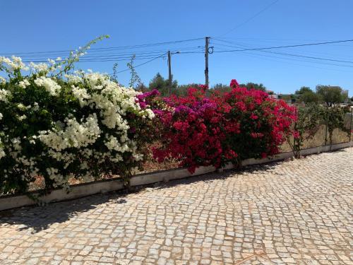 Guest House Alfarrobeiras, Albufeira
