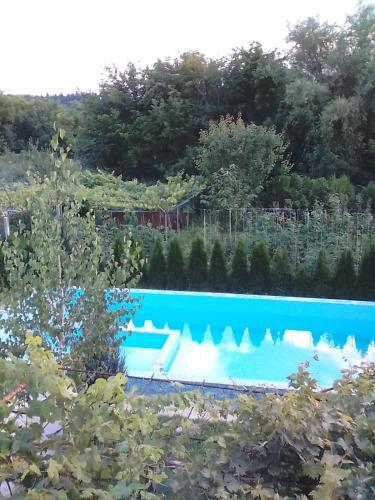 Villa Victoria, Pleven