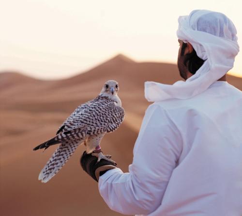 Arabian Nights Village photo 8
