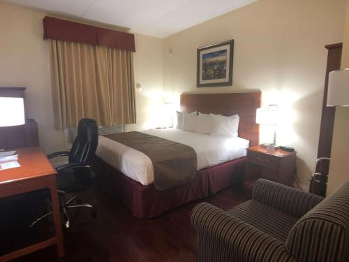 Best Western Jamaica Inn - image 3