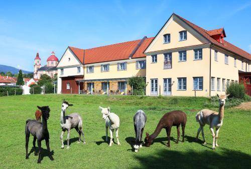 . JUFA Hotel Pöllau