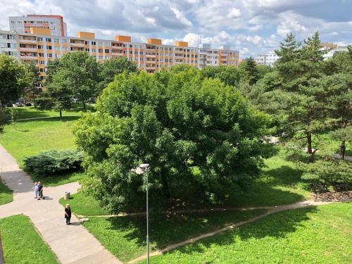 JEDENAST.SK, Námestie kozmonautov 5 Apartmán obrázok