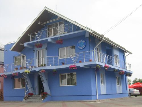 Casa David - Accommodation - R?d?u?i