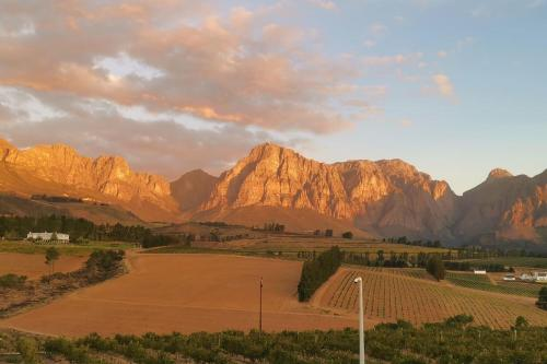 Farm stay in Cape Winelands