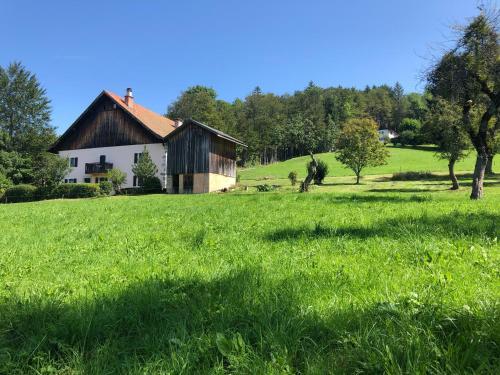 L'ÉPERVIER BLANC - Accommodation - Habère-Poche