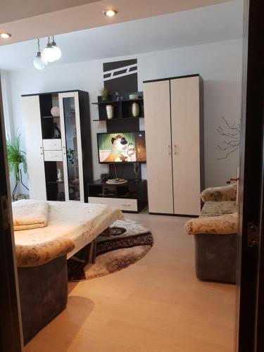 . Apartament Sofy
