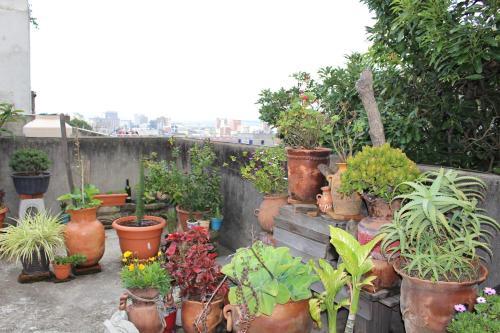 Habitaciones Eco Terrazas In Guatemala Guatemala Reviews