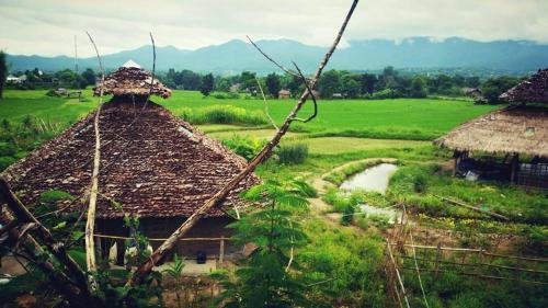 Thai-Zen Farmstay Thai-Zen Farmstay