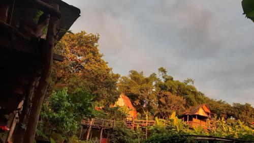 . Tree Lodge Banlung