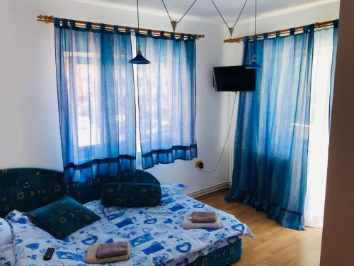 . Apartament Zarnesti