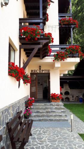 Casa Tad - Busteni