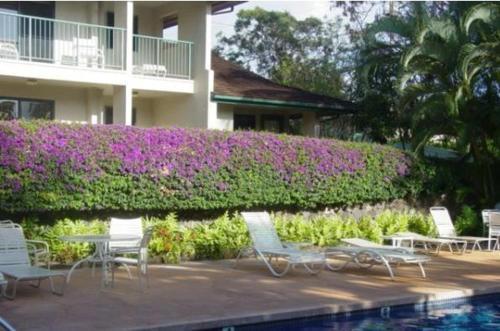 Gardens at West Maui - Lahaina, HI HI 96761
