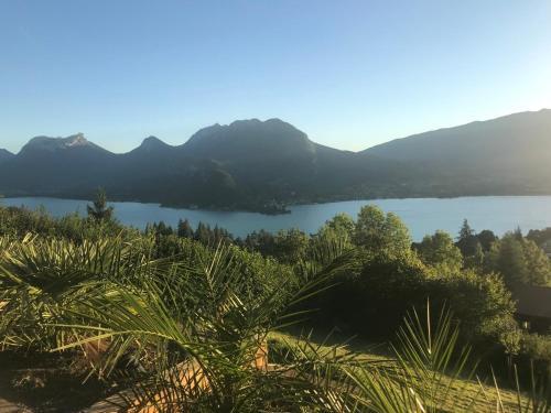 Lakeview 180° - Location, gîte - Talloires-Montmin