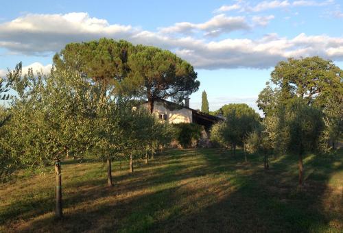 Foto - Relais Villa Sagramoso Sacchetti