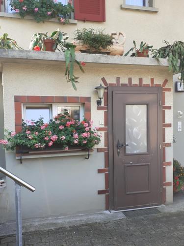 Wohnung Wohlensee - Apartment - Hinterkappelen