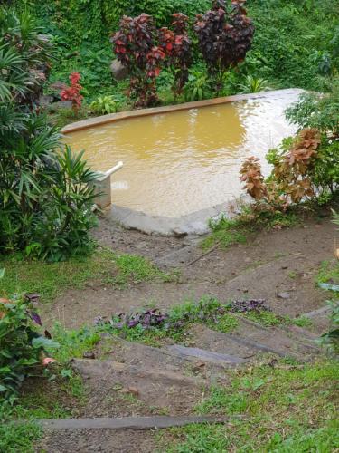 Ti Kwen Glo Cho, Roseau, Dominica