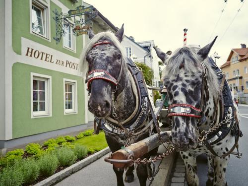 Holiday Apartments by Das Grüne  zur Post - 100 % BIO & Villa Ceconi, Pension in Salzburg
