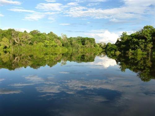 HotelReserva Natural Heliconia Amazonas