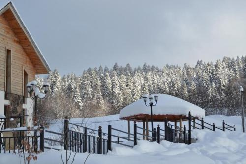 Cozy Cottage Bakuriani - Accommodation