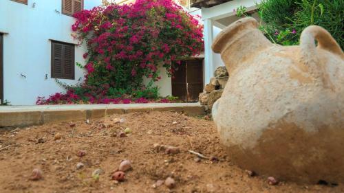 Cyprus Village House - Photo 2 of 26