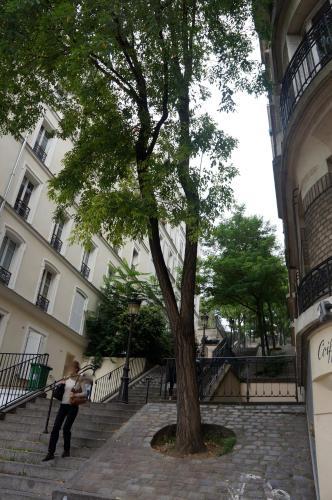 Studios de Charme à Montmartre photo 4