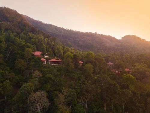 . Marmalade Springs Resort Wayanad