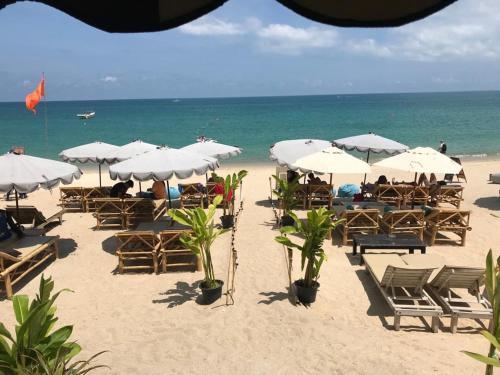 Oasis Beach Oasis Beach
