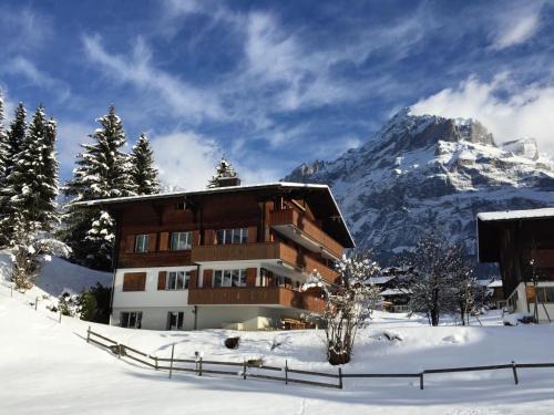 . Brand New, 5min to Ski PARADISE !