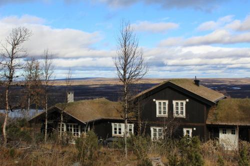 Torshaug 4 bedroom cabin - Chalet - Gol