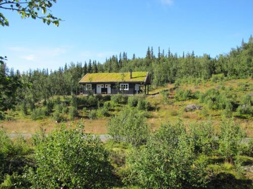 Linnaeus - 6 person cabin - Ål
