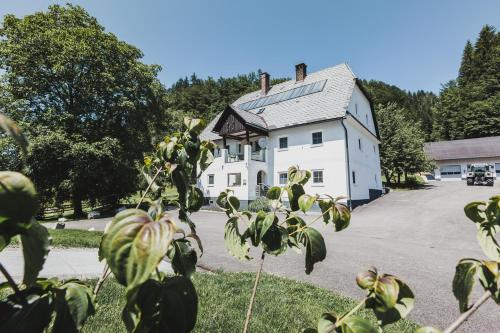 Bergergut - Mooslandl