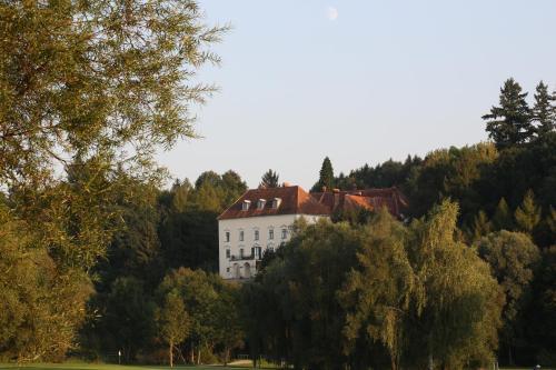 . Schloss Ernegg