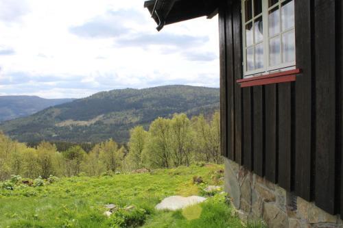 Bjørkebu - 8 person cabin - Ål