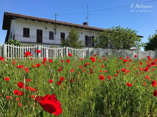 Il Melograno b&b - Accommodation - Gassino Torinese