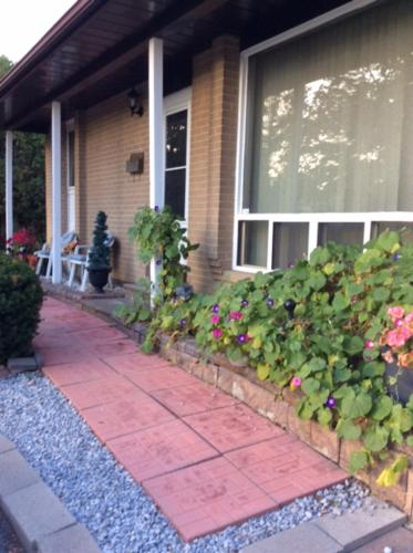 Private property with guest rooms (B&B)