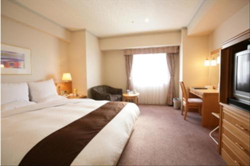 阿爾扎泉大津市埃爾斯特湖酒店 Hotel Lake Alster Alzar Izumiotsu