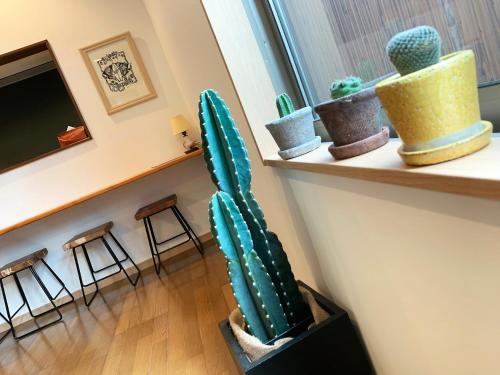 Cactus Inn / Vacation STAY 51553 image