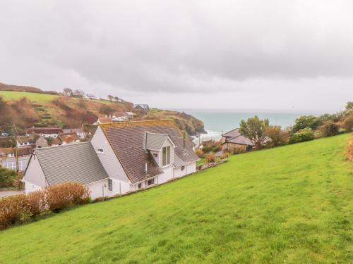 Spinnaker, Cadgwith