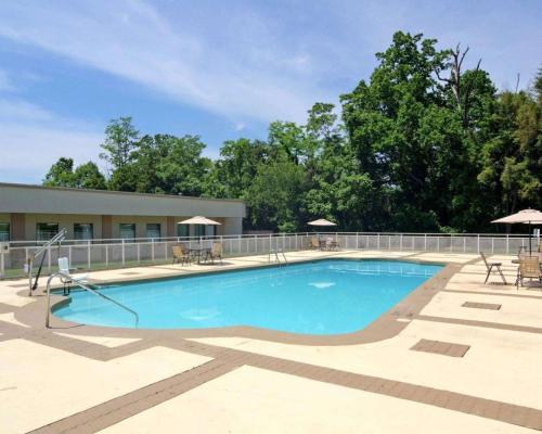Comfort Inn Monticello - Hotel - Charlottesville