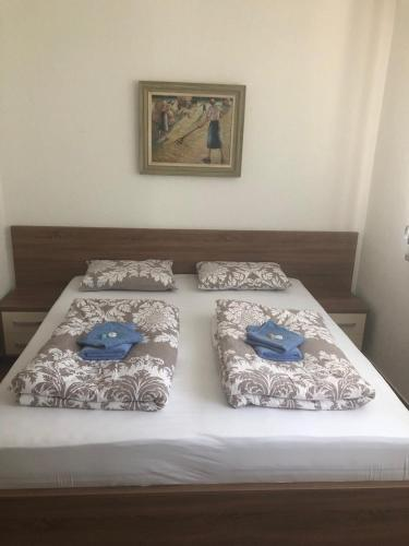 Guest House Agropapuk, Šid