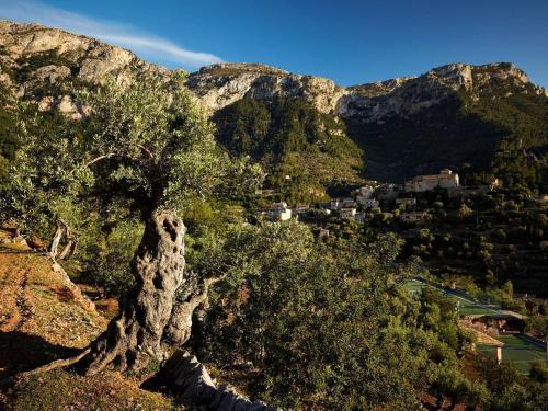 Son Canals, s/n, 07179 Deià, Illes Balears, Spain.