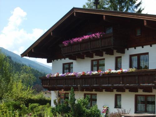 . Die Alpenrose