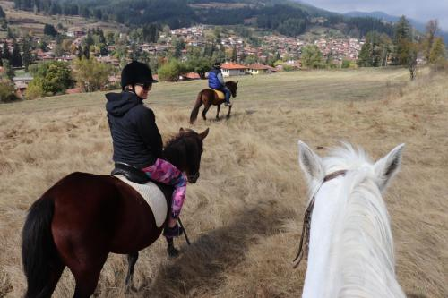 . Dona Guest House - Horse Riding