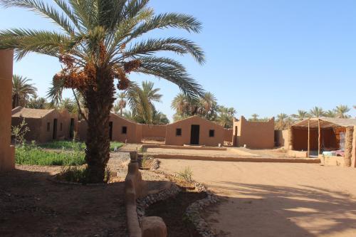 . Kasbah Desert Camp