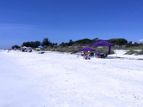 The Anna Maria Island Beach Castaway 1