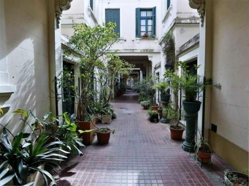 Pasaje Santamarina . Loft y patio en San Telmo