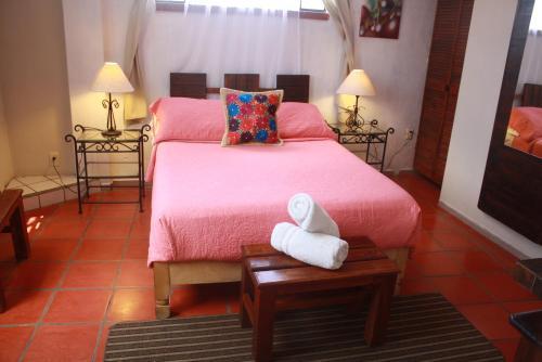 Casa Tepozanes, Guanajuato