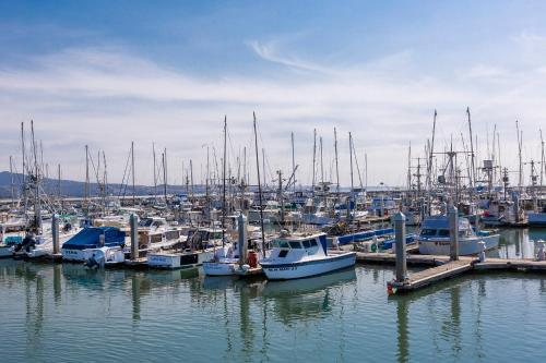 Coastal Seaside Retreat - Fun Family Activities for Kids - Walk to Beach - 30-45 mins to San Francisco - Sleeps 10 rom bilder