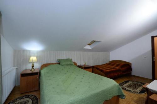 Pensiunea Dana - Hotel - Vatra Dornei