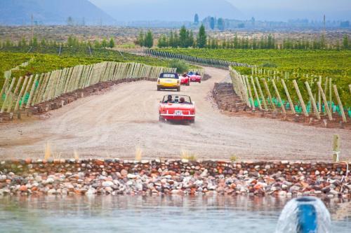 Ruta Provincial 94 km 14,5, 5565 Los Árboles, Argentina.